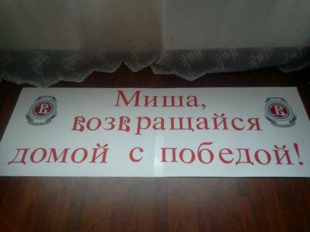 Воевода поддержит Анисина!!!